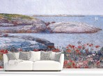 하삼 - 양귀비 꽃밭